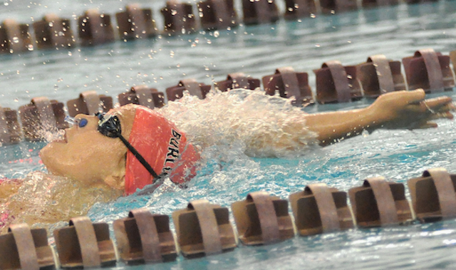 Burlington swimmers breeze past Whippets