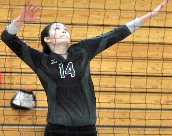 Waterford volleyball goes down swinging