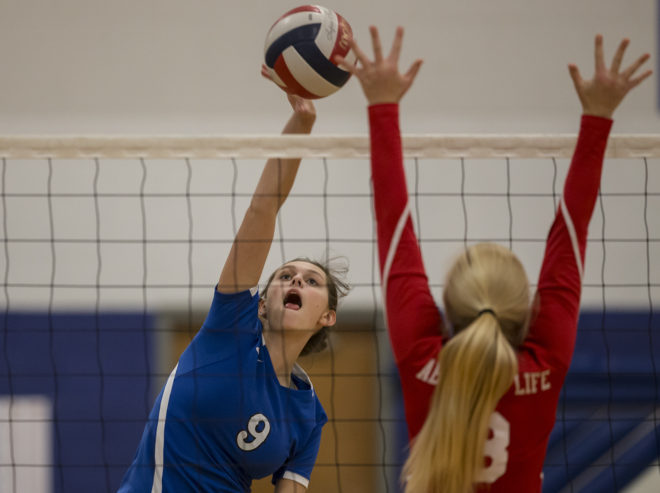 Catholic Central volleyball run stops one step from state
