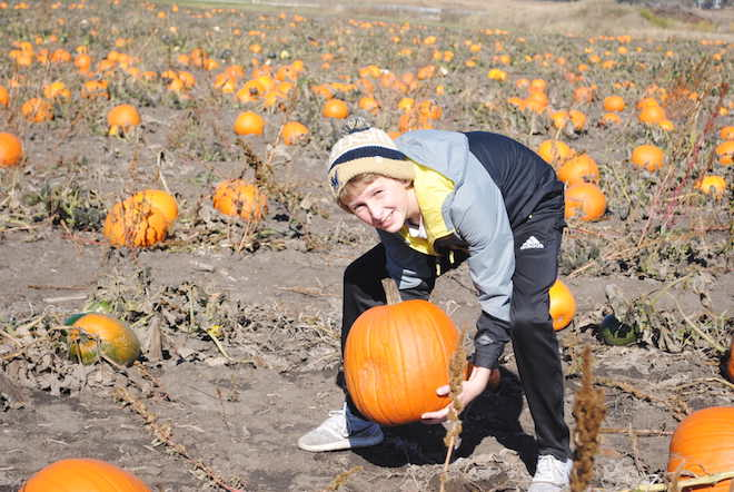 Great Pumpkin Chuckin Fest to take place this weekend