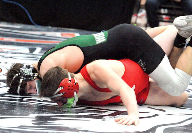 Wolverine wrestlers set for state